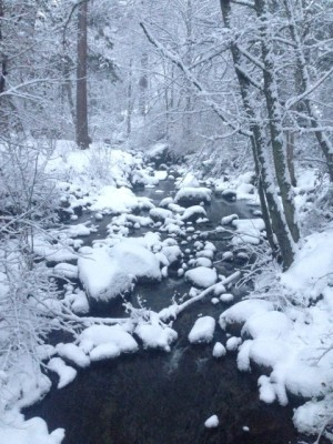 Ashland Creek in winter