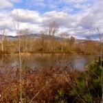 Ashland Ponds park in Ashland, Oregon