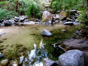 Fairy Ponds on Ashland Creek in Ashland, Oregon