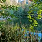 Lower Reservoir on Ashland Creek