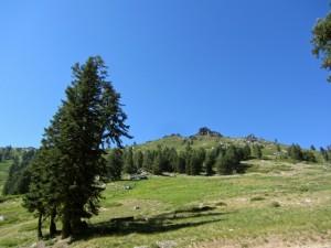 Mt. Ashland