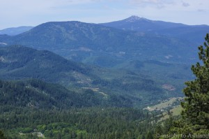 PCT view of Mt. Ashland