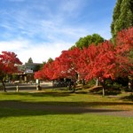 Southern Oregon University in Fall