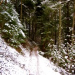 Toothpick Trail in winter