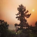Ashland Smoke 2013